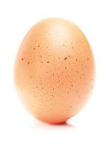 egg 3, 4/11/02, 11:28 AM,  8C, 3750x5000 (0+0), 62%, bent 6 stops,  1/15 s, R10.3, G4.5, B12.6