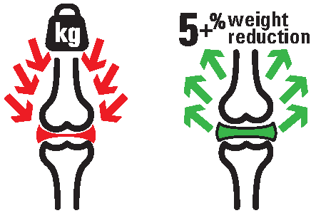 WeightReductionGraphic