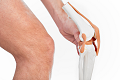 knee joint iStock_000019421688Small